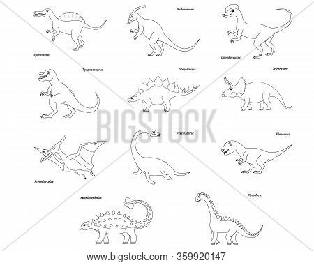 Coloring Page Outline Spinosaurus Dinosaur. Vector Illustration Isolated On White Background