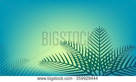 Coconut Leaf Simple On Ocean Blue Soft Color For Background, Illustration Of Coconut Leaves, Palm St