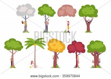 People Standing Behind Trees, Young Men And Women Hiding And Peeking Behind Tree Trunks Vector Illus