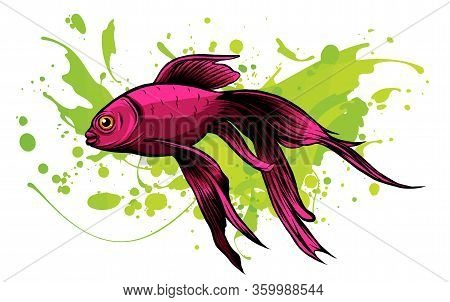 Red Drum, Redfish. Vector Illustration With Refined Details