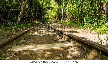 Old Abandoned Unused Train Track In A Forest. Old Railway Line In The Woods, New Zealand