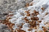 The white and orange mineral deposit of a hot spring in Yellowstone National Park, USA. poster