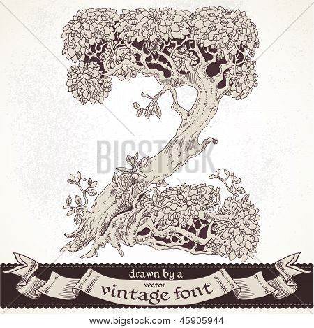 Fable forest hand drawn by a vintage font - Z