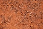 Texture of dry red clay with stones close-up poster