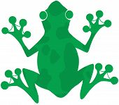 Green Spotted Frog Silhouette Logo Cartoon Character poster