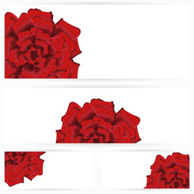 Set of red roses isolated on white background