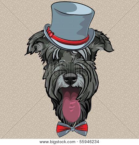 Vector Funny Cartoon Hipster Dog Schnauzer