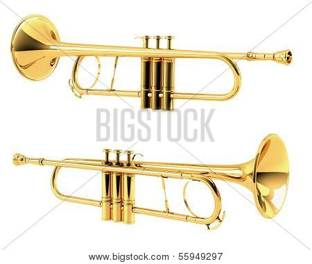 Golden trumpet isolated.