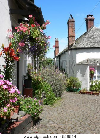 Clovelly Cottages