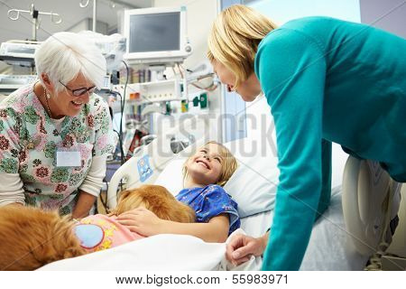 Young Girl Being Visited In Hospital By Therapy Dog