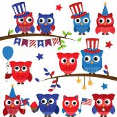 Set of Vector Fourth of July or Patriotic Owls and Branches poster