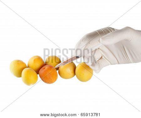 salad,fruit,gmo,gdo