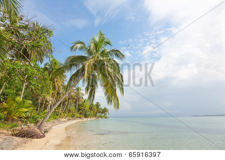 Deserted Starfish beach on the archipelago Bocas del Toro, Panama poster