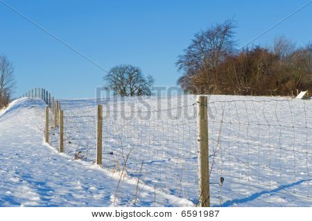 Landscape with fence