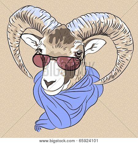 Vector Closeup Portrait Of Funny Alpine Ibex