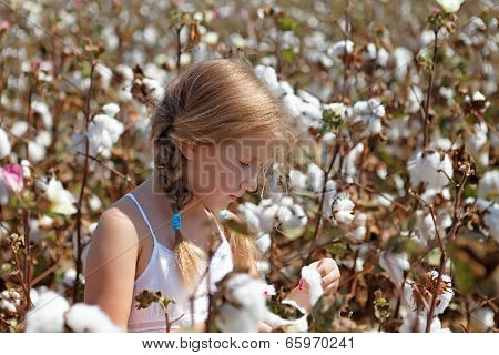 Young Girl Walking In A Field Of Cotton