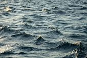 Waves of the stormy sea poster