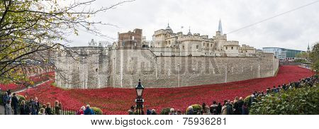 LONDON, UK - NOVEMBER 08: Panoramic of art installation by Paul Cummins at Tower of London. November 08, 2014 in London. The ceramic poppies were planted to mark the centenary of WWI's outbreak.