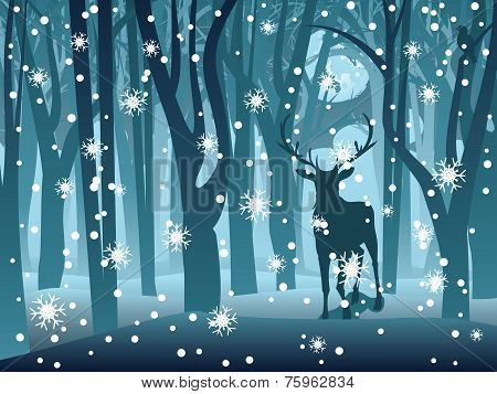 Stag In Winter Forest