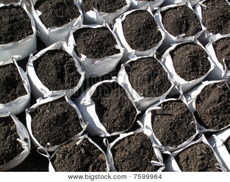 Bags of topsoil