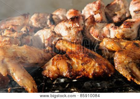 Chicken Wings  And Juicy Roasted Kebabs And  On The Bbq