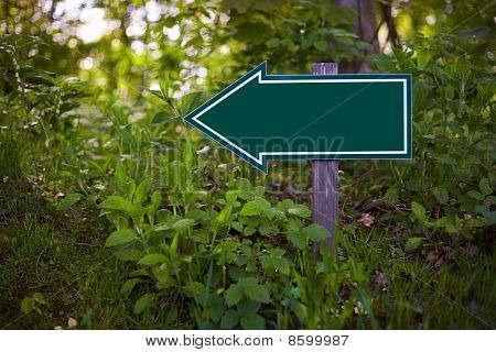 Empty Sign In A Forest