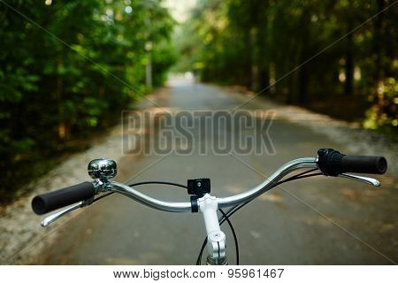 Steer of bicycle in riding down park road