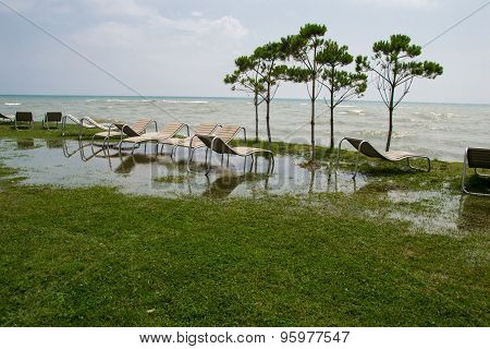 Photo of the seaside resort, chaise longue, black sea, grass, trees Georgia poster