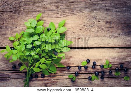 Blueberry Branch With Leaves And Blue Berries On Old Wooden Background. Vintage Stylized.