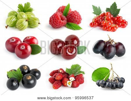 Sweet Berries
