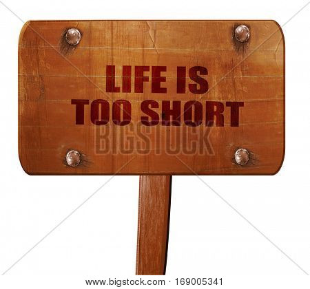 life is too short, 3D rendering, text on wooden sign