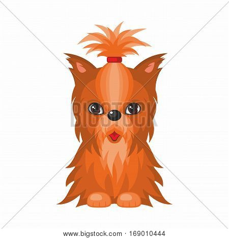 Yorkshire Terrier dog. Vector image of a cute purebred dogs in cartoon style.