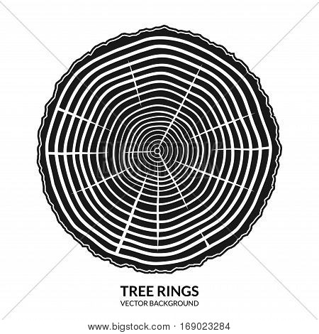 Tree rings. Cross section of a tree. Annual growth symbol icon or logo isolated on white background