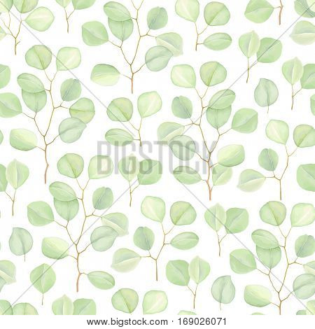 Seamless greenery background with branches Silver Dollar Eucalyptus. Vector nature illustration in vintage watercolor style.