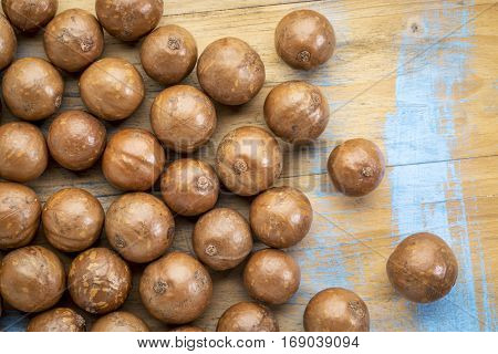 macadamia nuts in shells on a rustic grunge wood - top view