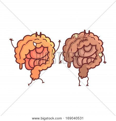 Large Intestine Human Internal Organ Healthy Vs Unhealthy, Medical Anatomic Funny Cartoon Character Pair In Comparison Happy Against Sick And Damaged. Vector Illustration Humanized Anatomic Elements.