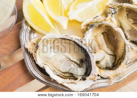 Raw fresh open oysters shells with lemons close up