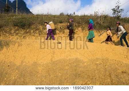 HA GIANG, VIETNAM - FEBRUARY 6: Unidentified group of Hmong people go home from work on February 6, 2014 in Ha Giang, Vietnam
