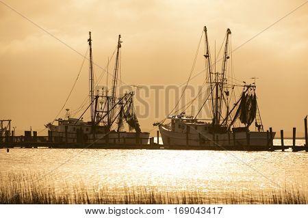 fishing vessels docks against golden backlit sky in the ocean