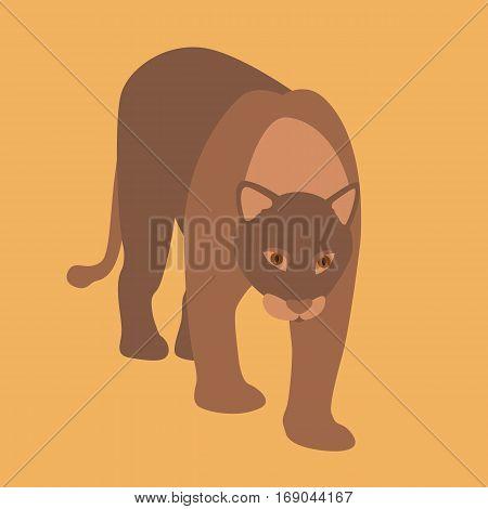 cougar vector illustration style Flat front side