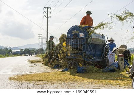 Hanoi, Vietnam June 6: Unidentified farmers work on rice field in harvest season on June 6, 2014 in Hanoi, Vietnam. Rice tree after harvesting put in machine for separating rice from rice tree.