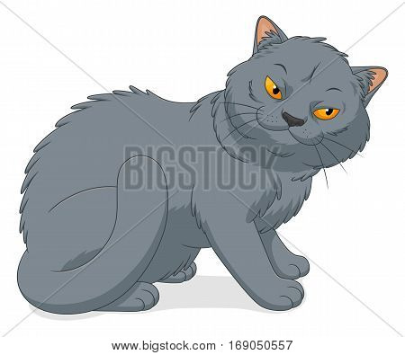 Cartoon British Shorthair cat on the white background.