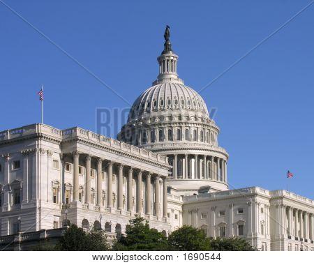 The Capitol ( Washington D.C.)