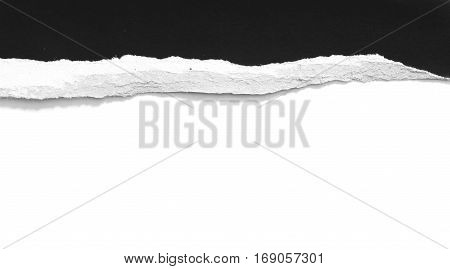 Torn pieces of paper on white background