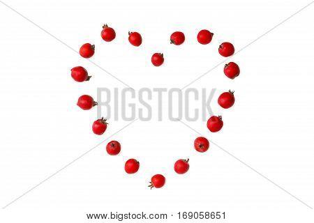 Hawthorn berries in heart shape on white backgound