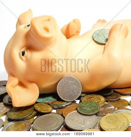 Big pig with coins isolated on white.