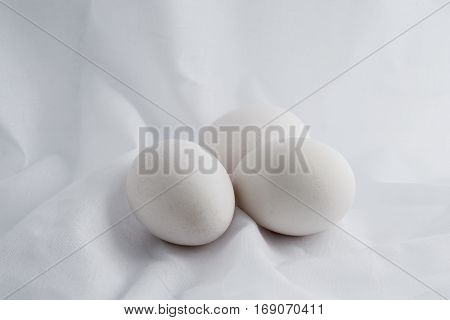An eggs white on vintage white background.