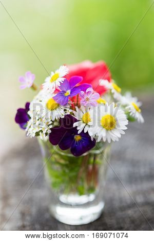 Closeup of colourful garden flowers in a glass on old wooden tree trunk. Selective focus