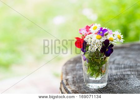 Closeup of colourful garden flowers in a glass on old wooden tree trunk with copy-space. Selective focus