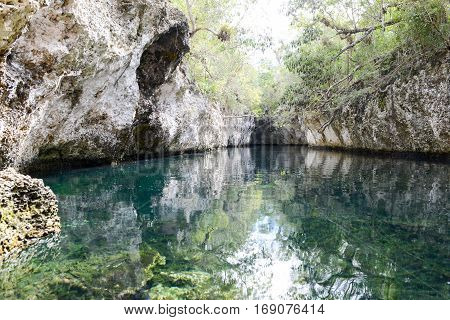 Forest with a cenote at Giron on Cuba